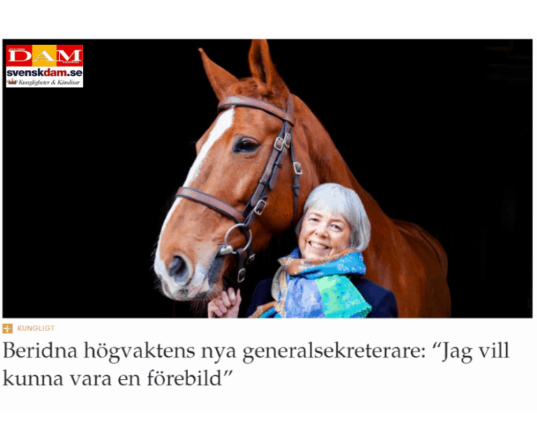 ledarskapsprofilering, Lena Linn, Beridna Högvakten, Svensk Damtidning